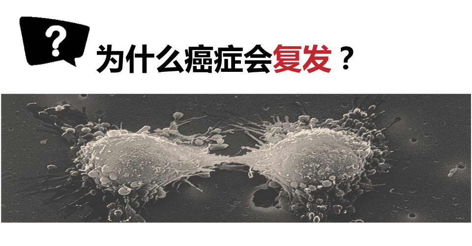 [资讯分享25] 为什么癌症会复发?